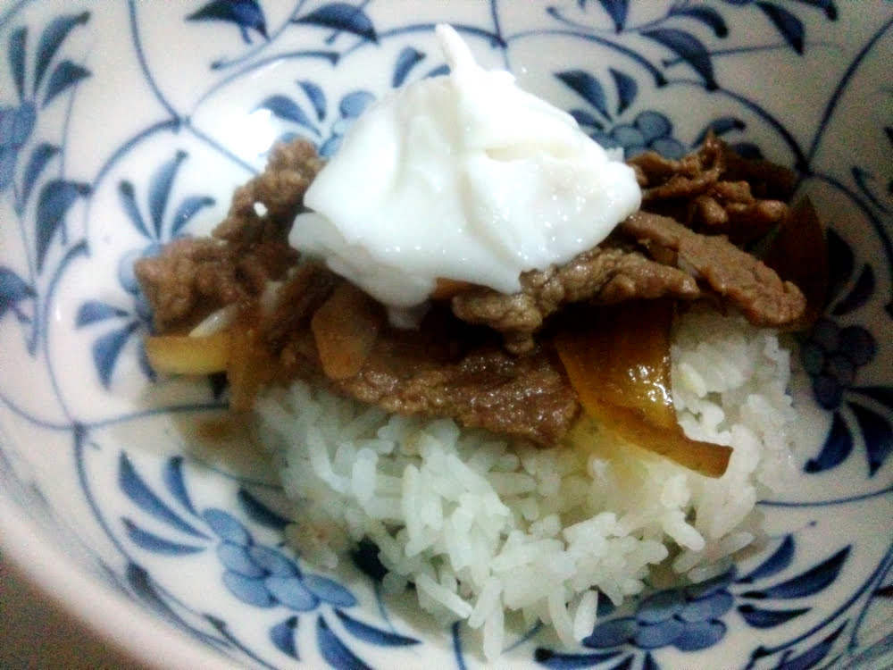 Gyudon (Carne Acebolada com Arroz)