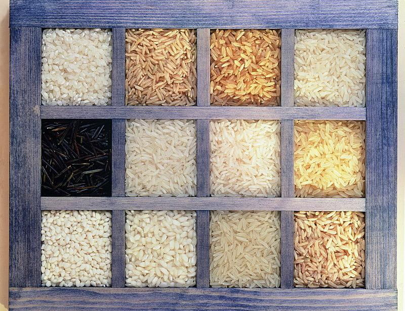 Conhecendo um pouco mais sobre o arroz
